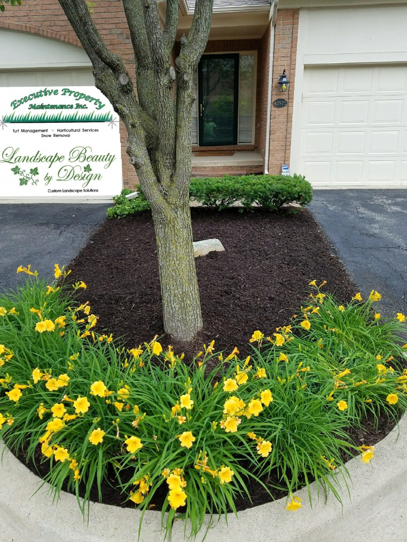 Landscaping Contractors in Canton MI | Executive Property Maintenance - ff7a5f83-b878-4870-be7d-c217a1707240-original