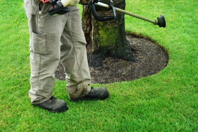 Commercial Grounds Maintenance Westland - Executive Property Maintenance - lawncare1