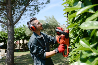 Commercial Grounds Maintenance Livonia - Executive Property Maintenance - lawncare4