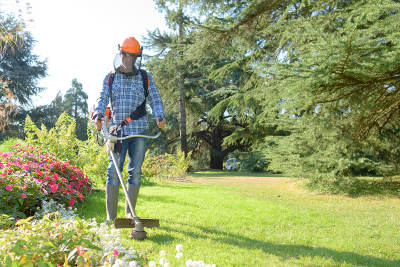 Lawn Care Novi - Executive Property Maintenance - lawncare6