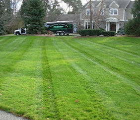Commercial Grounds Maintenance in SE Michigan - Executive Property Maintenance - linedgreen